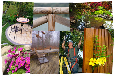 Professional, qualified landscaping and tree surgery in and around Guildford, Surrey